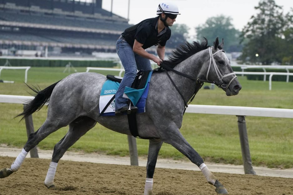 Essential Quality trains ahead of the 153rd running of the Belmont Stakes horse race in Elmont, ...