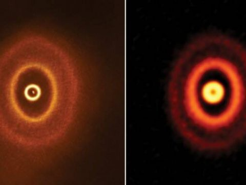 The gap outside the innermost ring suggests to a team of researchers that a planet has formed f ...